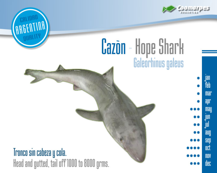 Cazón - Hope Shark