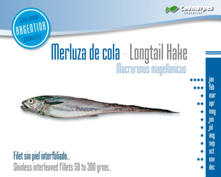 Merluza de cola - Longtail Hake