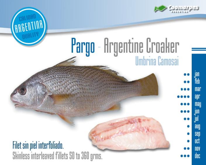 Pargo - Argentine Croaker