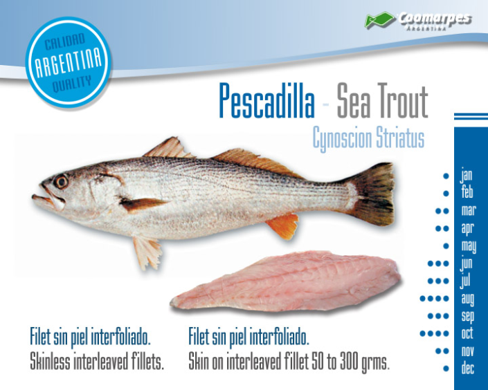 Pescadilla - Sea Trout